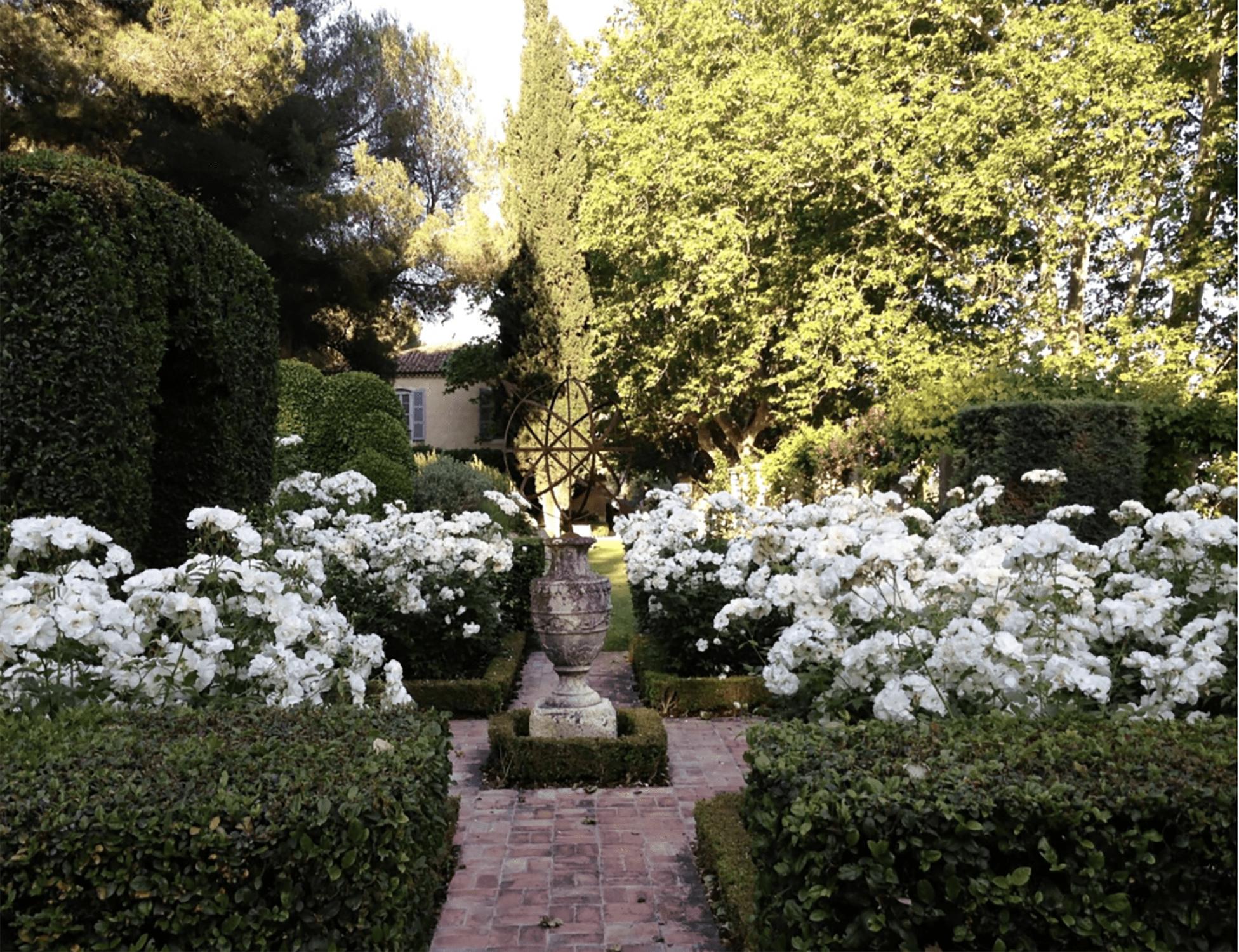 mas de baraquet rose garden