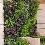 Vertical Gardens… I'm Obsessed