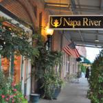 Trad Home Napa Valley Show House Tour