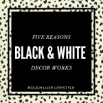 Black and White Decor- Why It Works