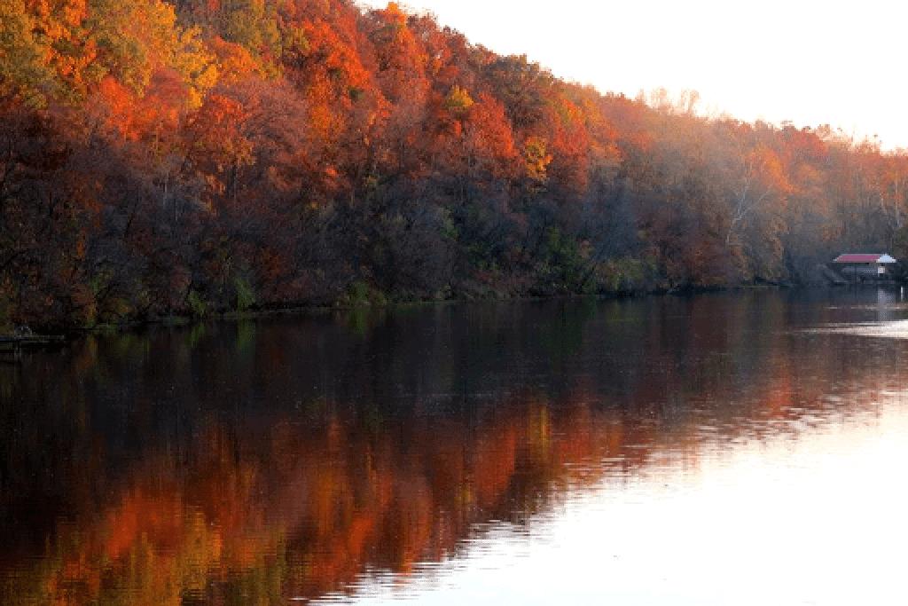 lake freeman