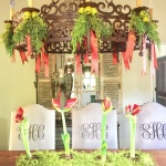 How to Decorate for Christmas Using Organic Materials Part Two