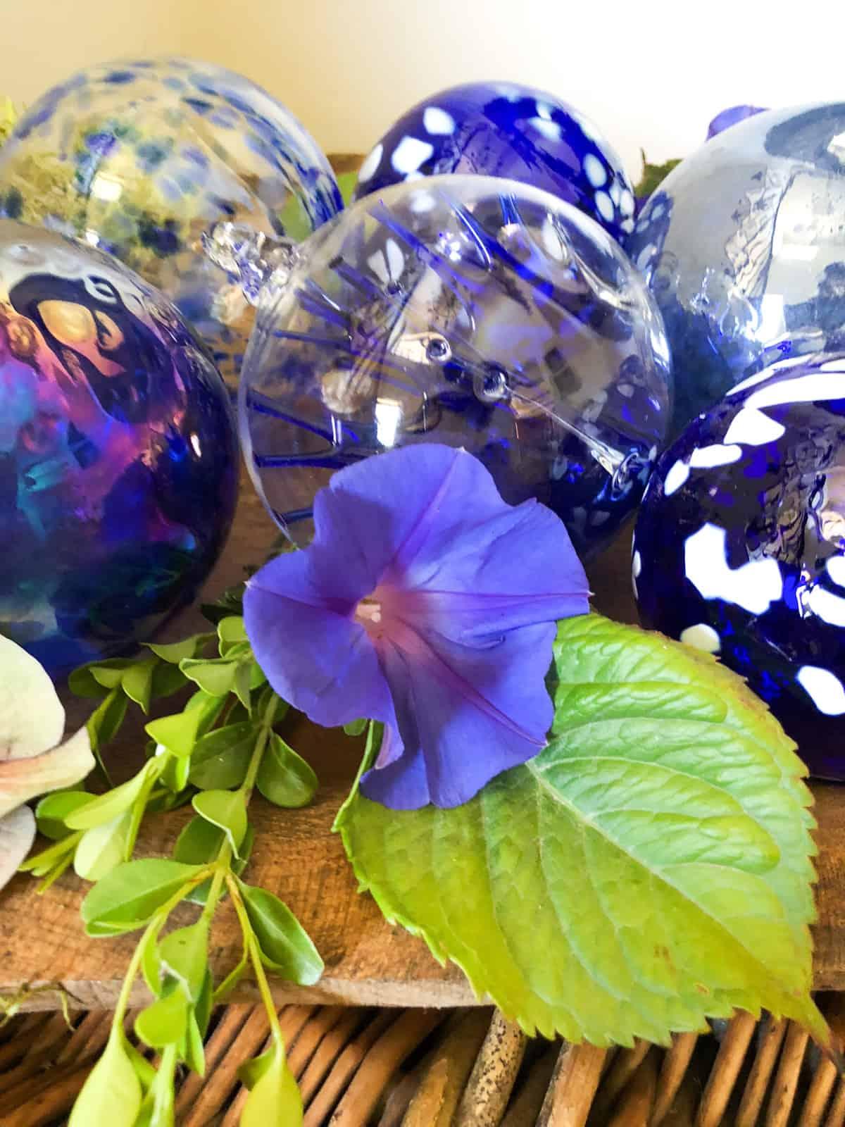 blue ornaments & plants