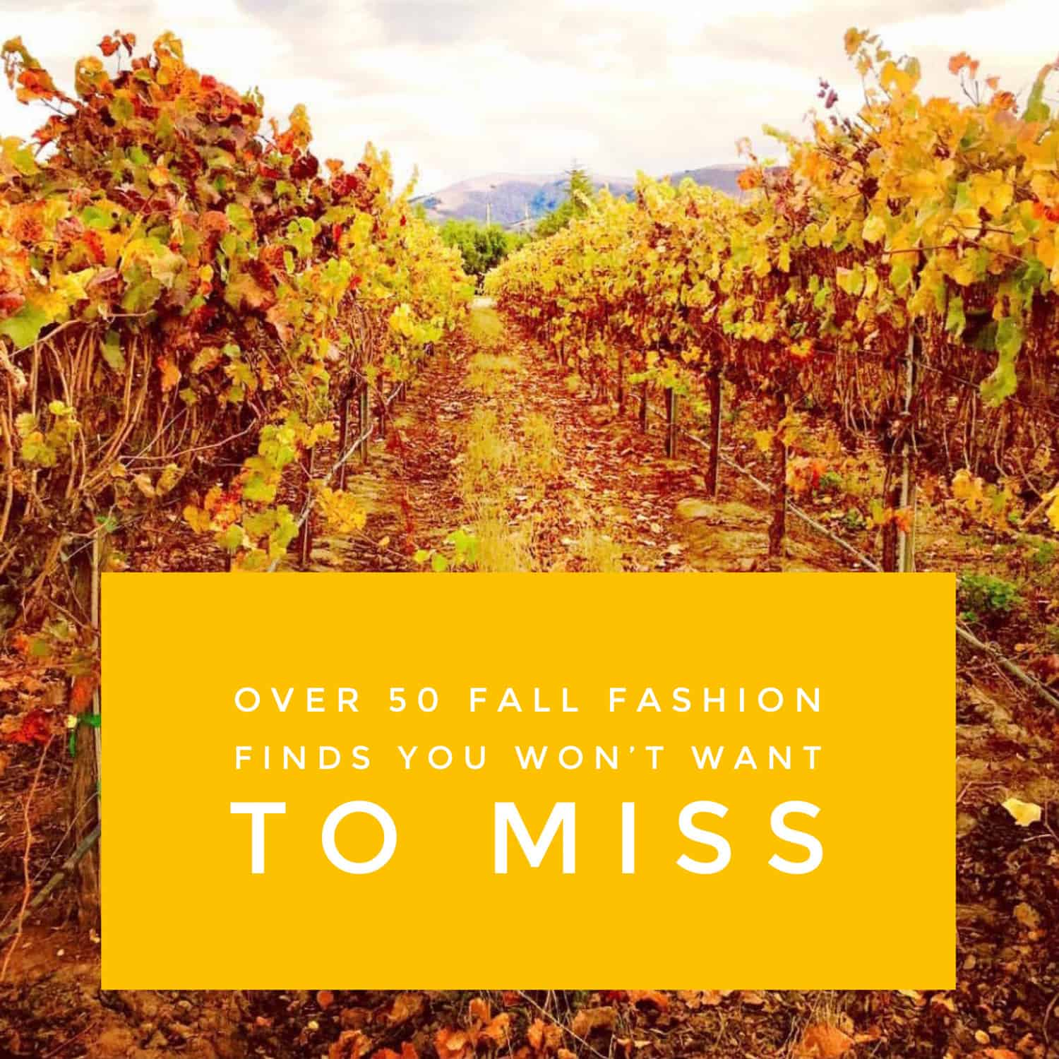 over 50 fall fashion finds you wont want to miss