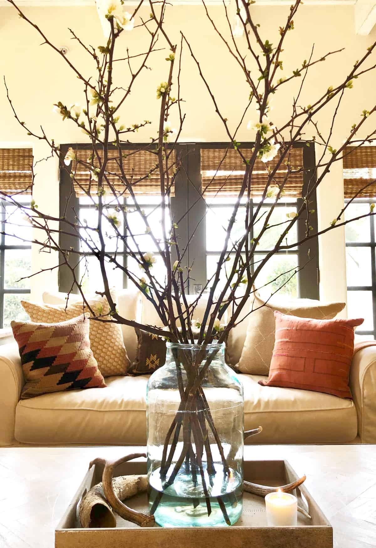 coffee table with tray and flowering branches