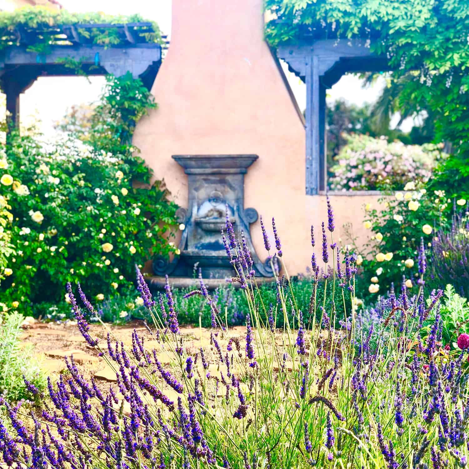 the importance of structure in the garden part two
