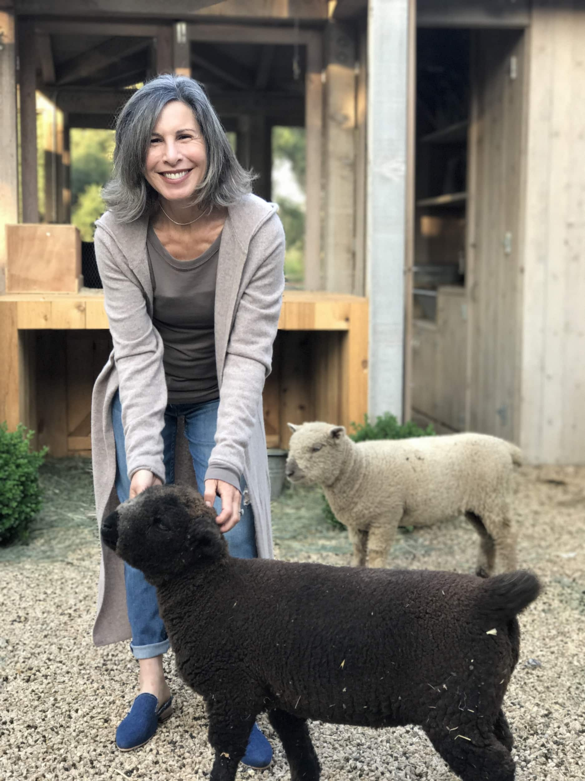 brook giannetti with sheep