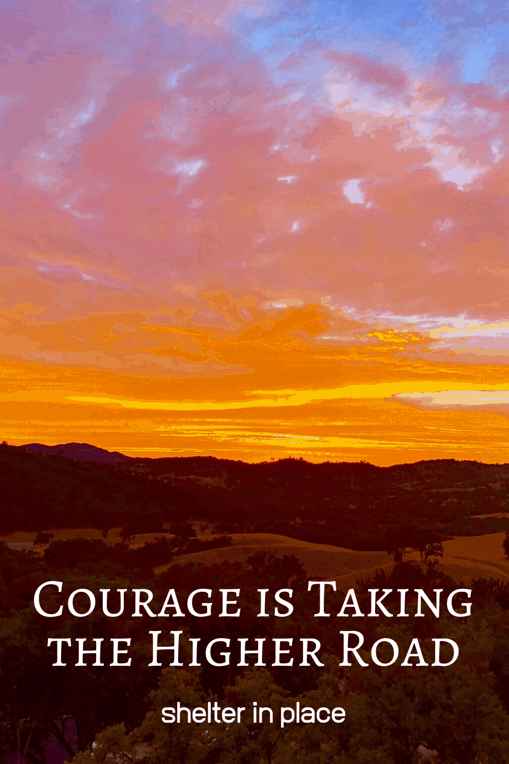 Courage is taking the higher road