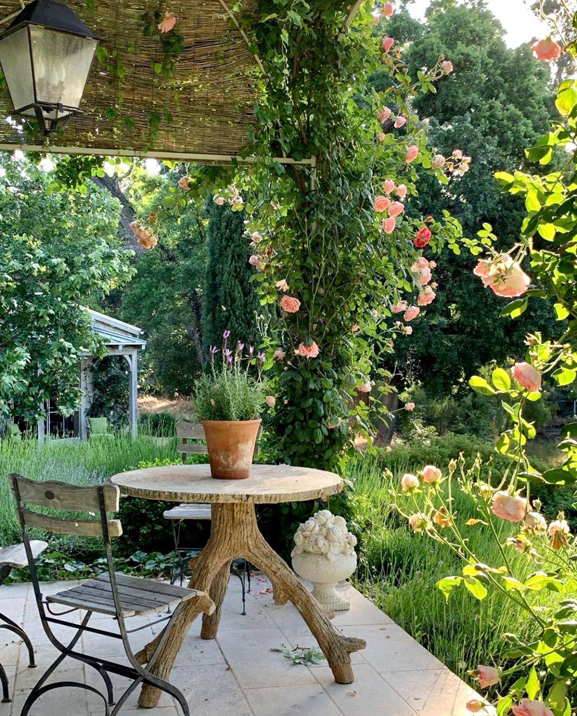 patina farm garden