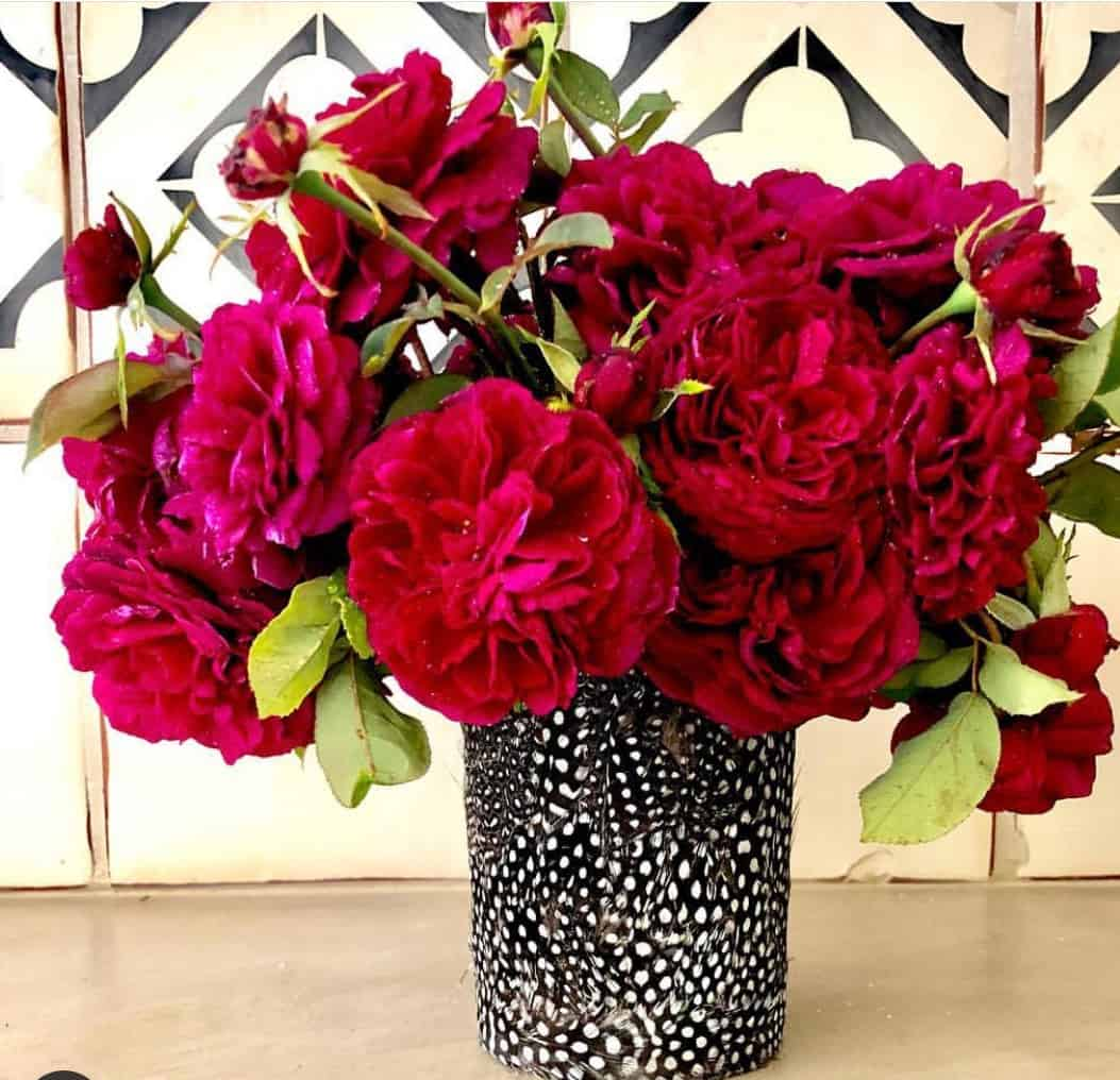 bouquet of prince roses