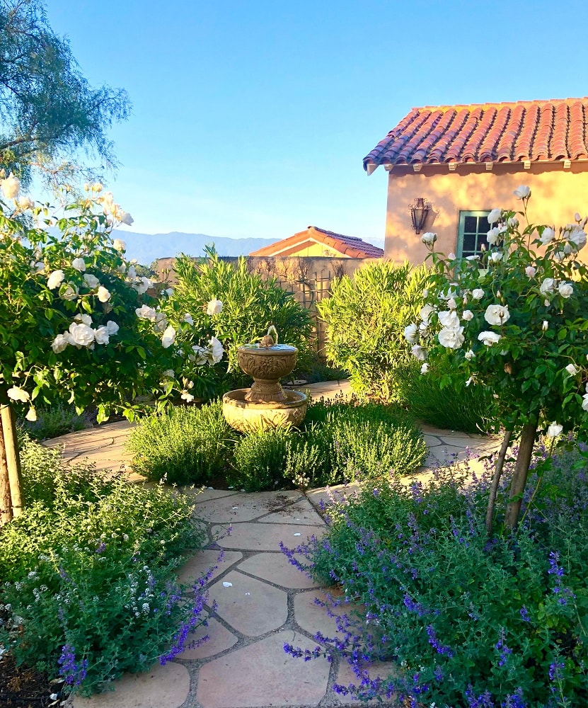cindy hattersley's fountain in the center of her rose gardenr