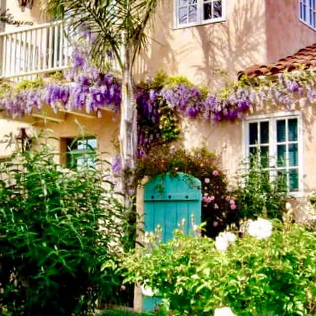 cindy hattersley's garden gate and wisteria