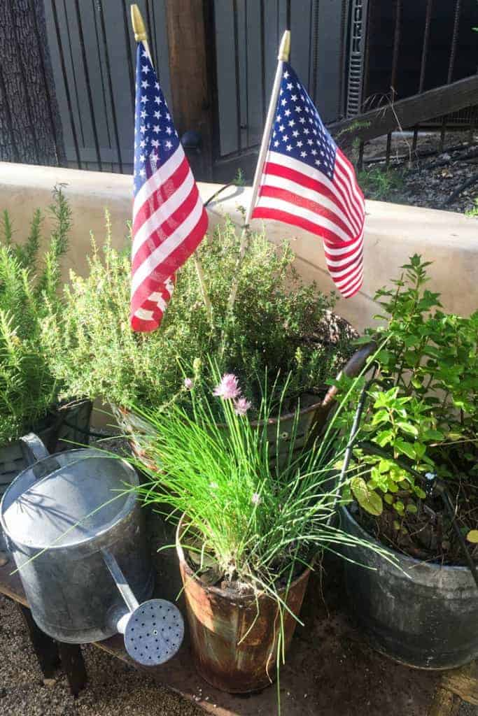 cindy hattersleys herb pot garden at the lake