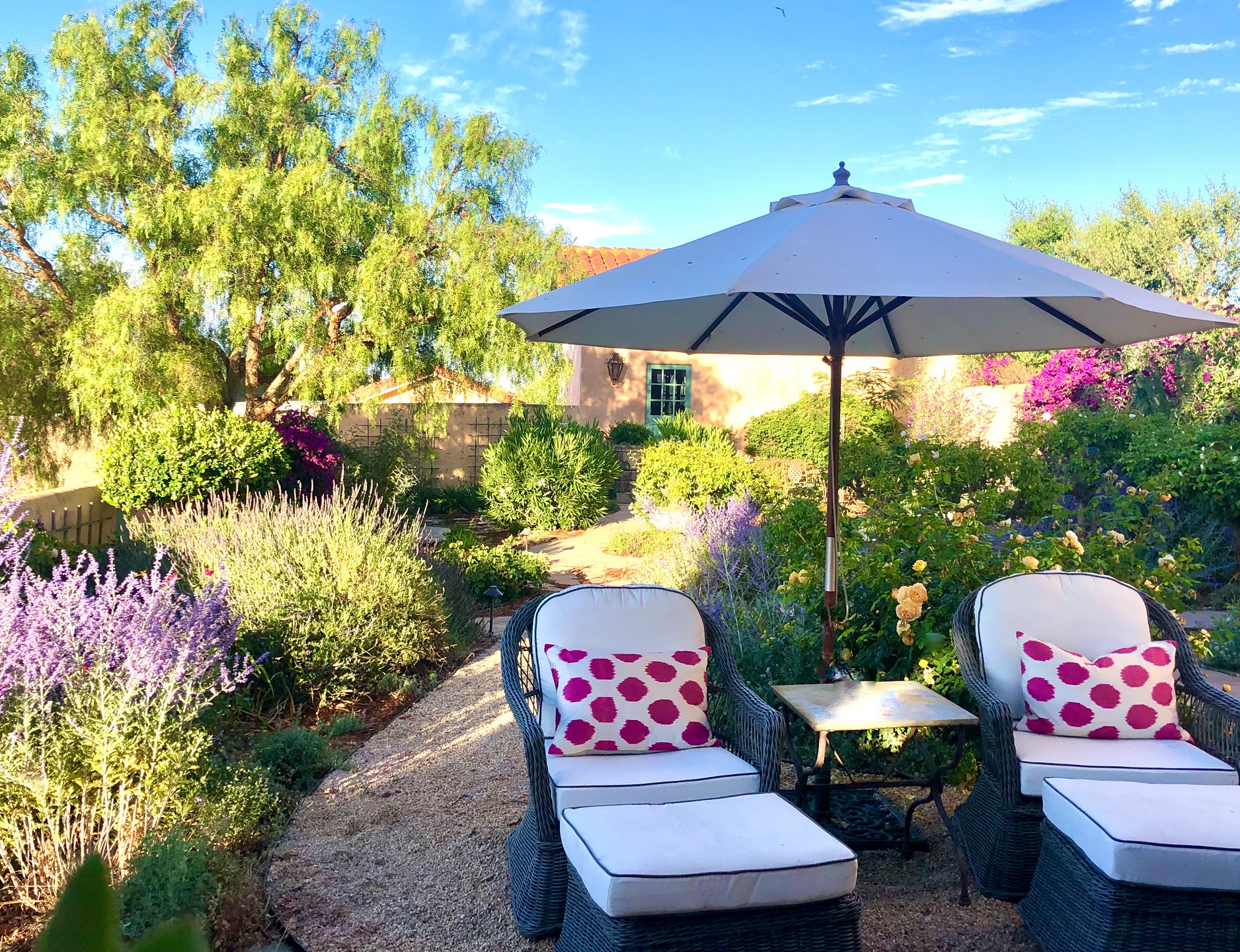 design blogger cindy hattersley's rose garden with lounge chairs