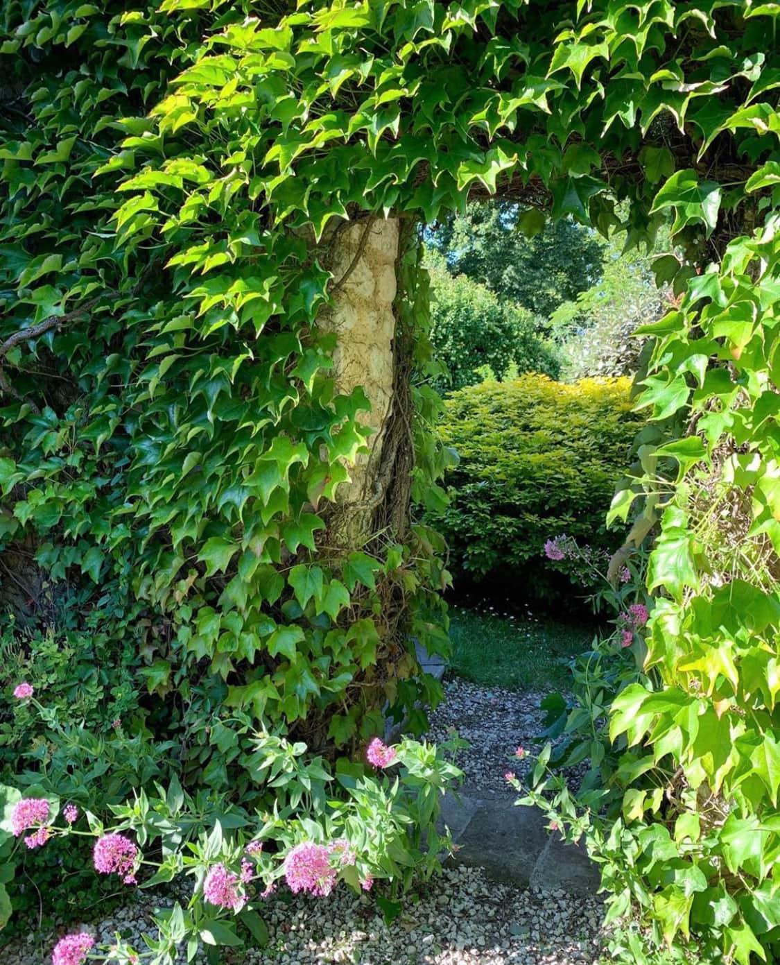 secret french garden