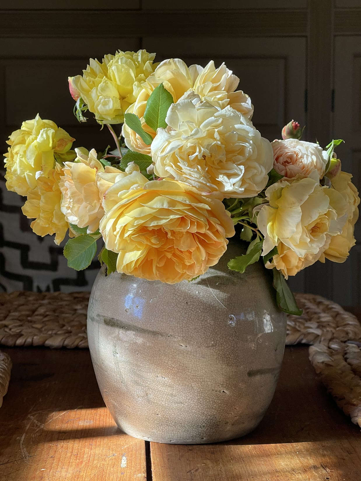 Cindy Hattersley's roses