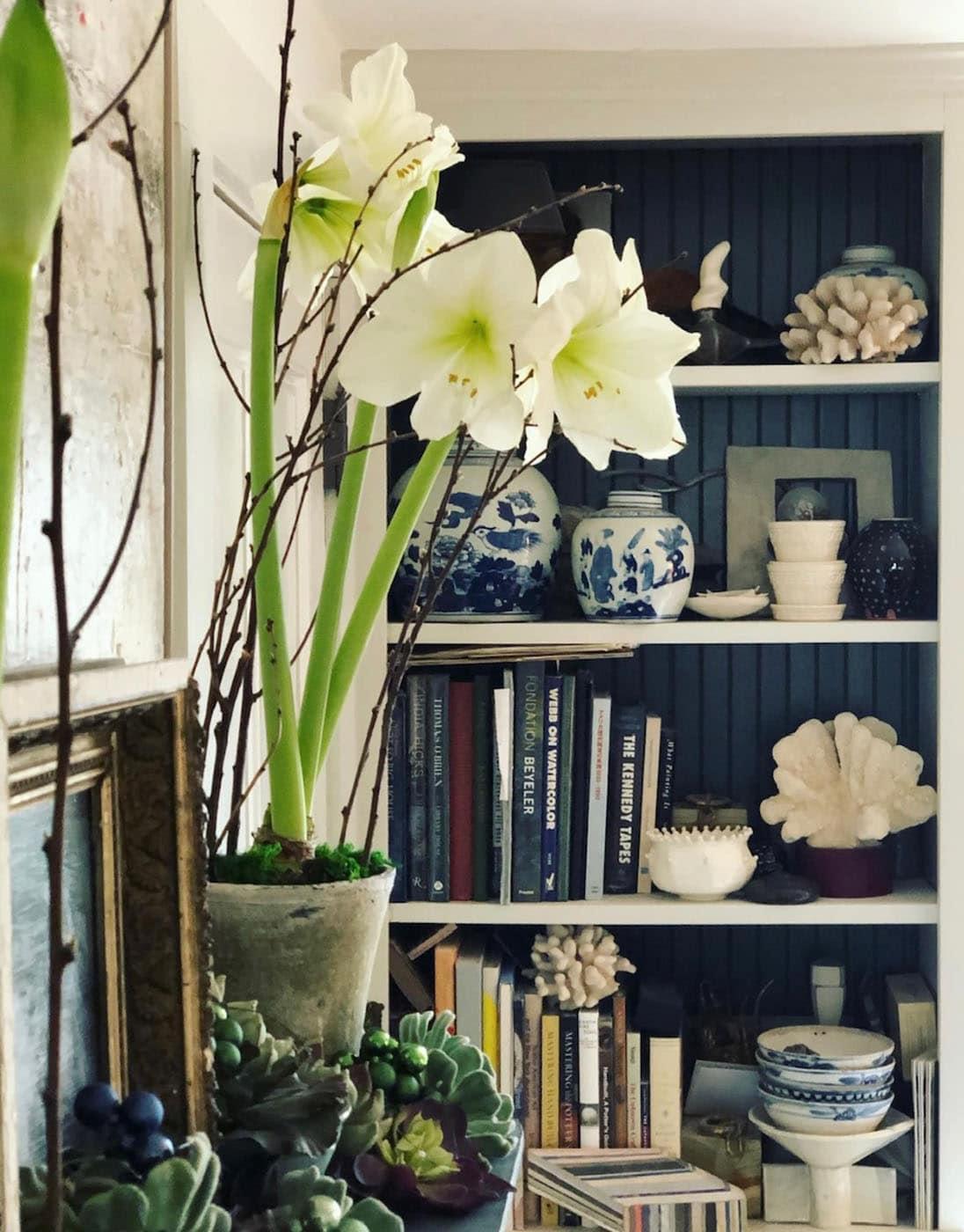 Urban Cottage Bookshelves