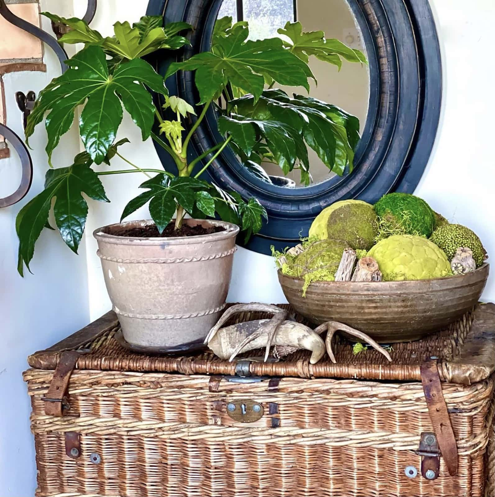 vintage travellng trunk in Cindy Hattersley's Spanish Colonial entry