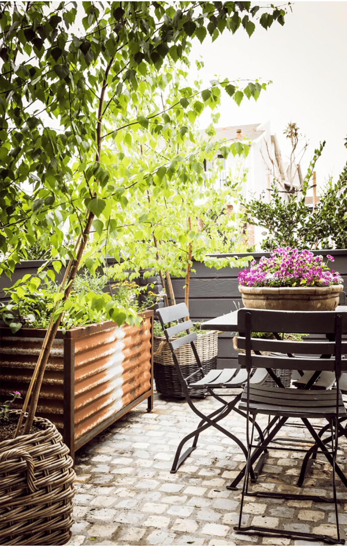 kelley motschenbacher patio garden