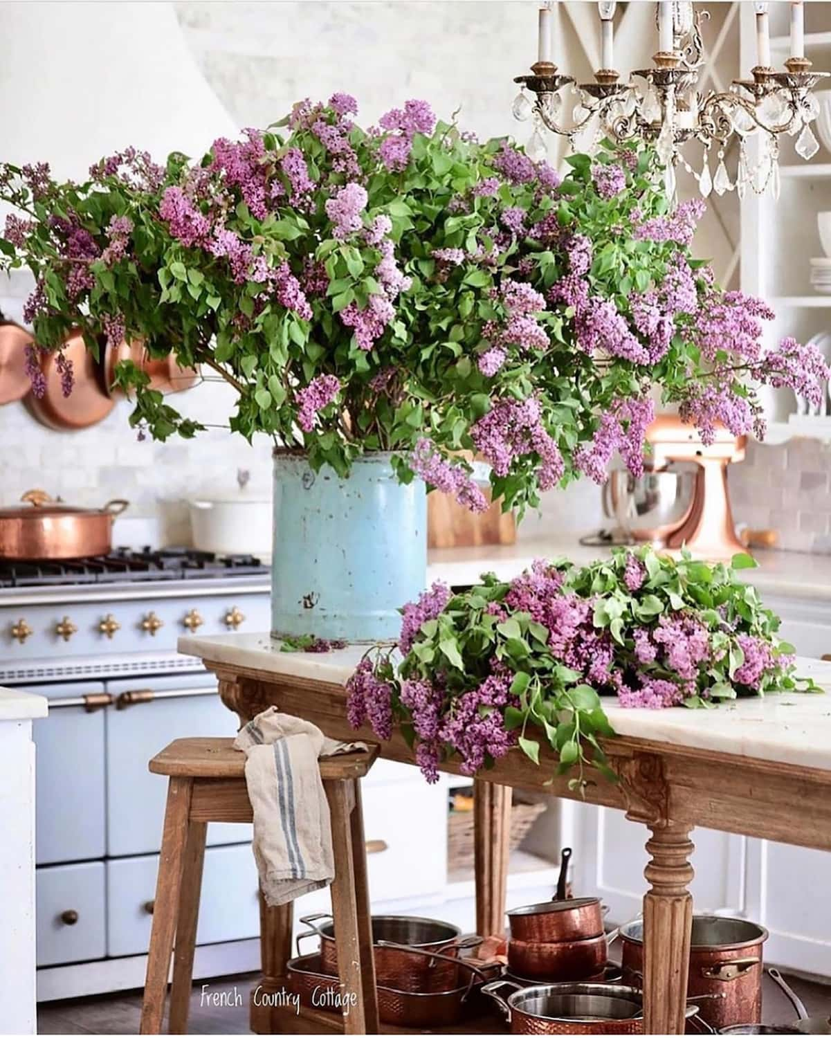 lilacs via french country cottage