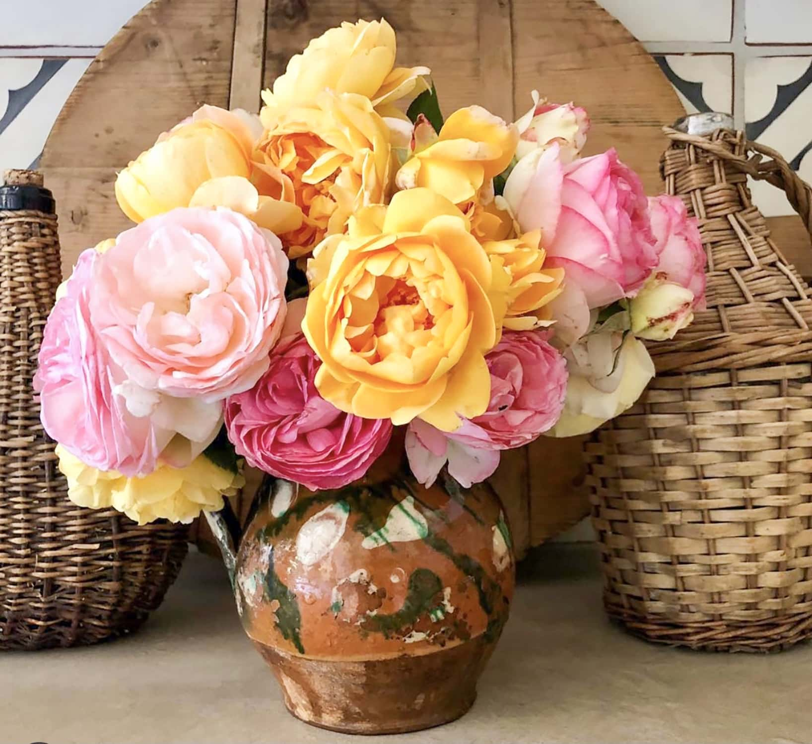pink and yellow roses from cindy hattersley's garden