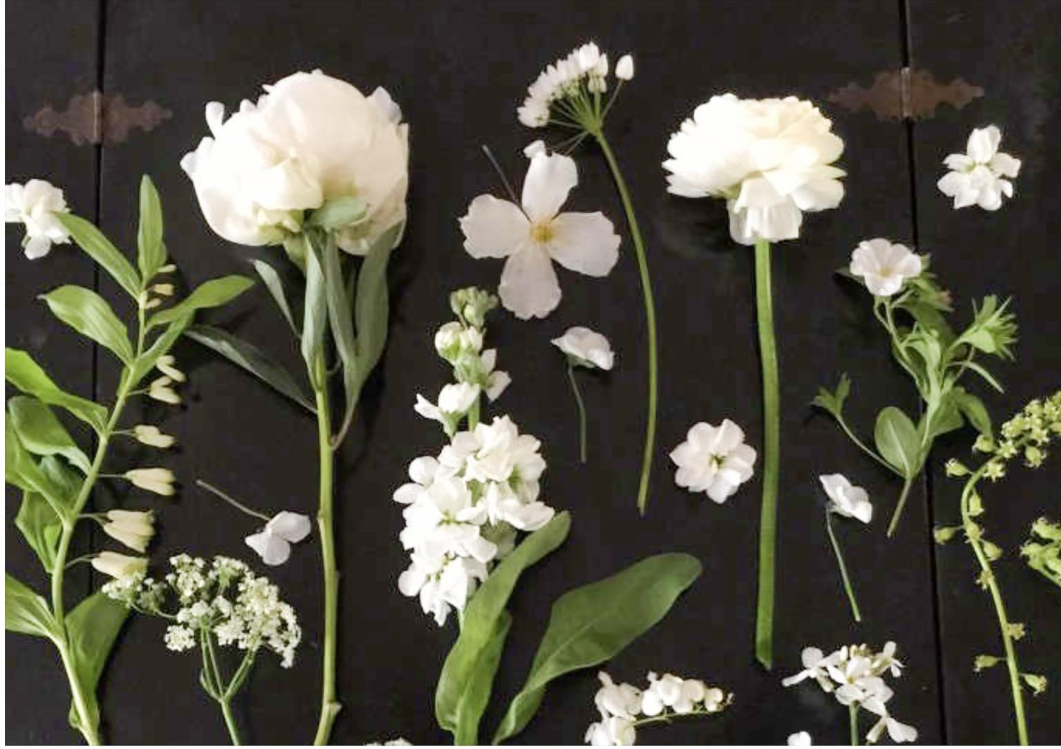 white flowers from gardenista white garden article