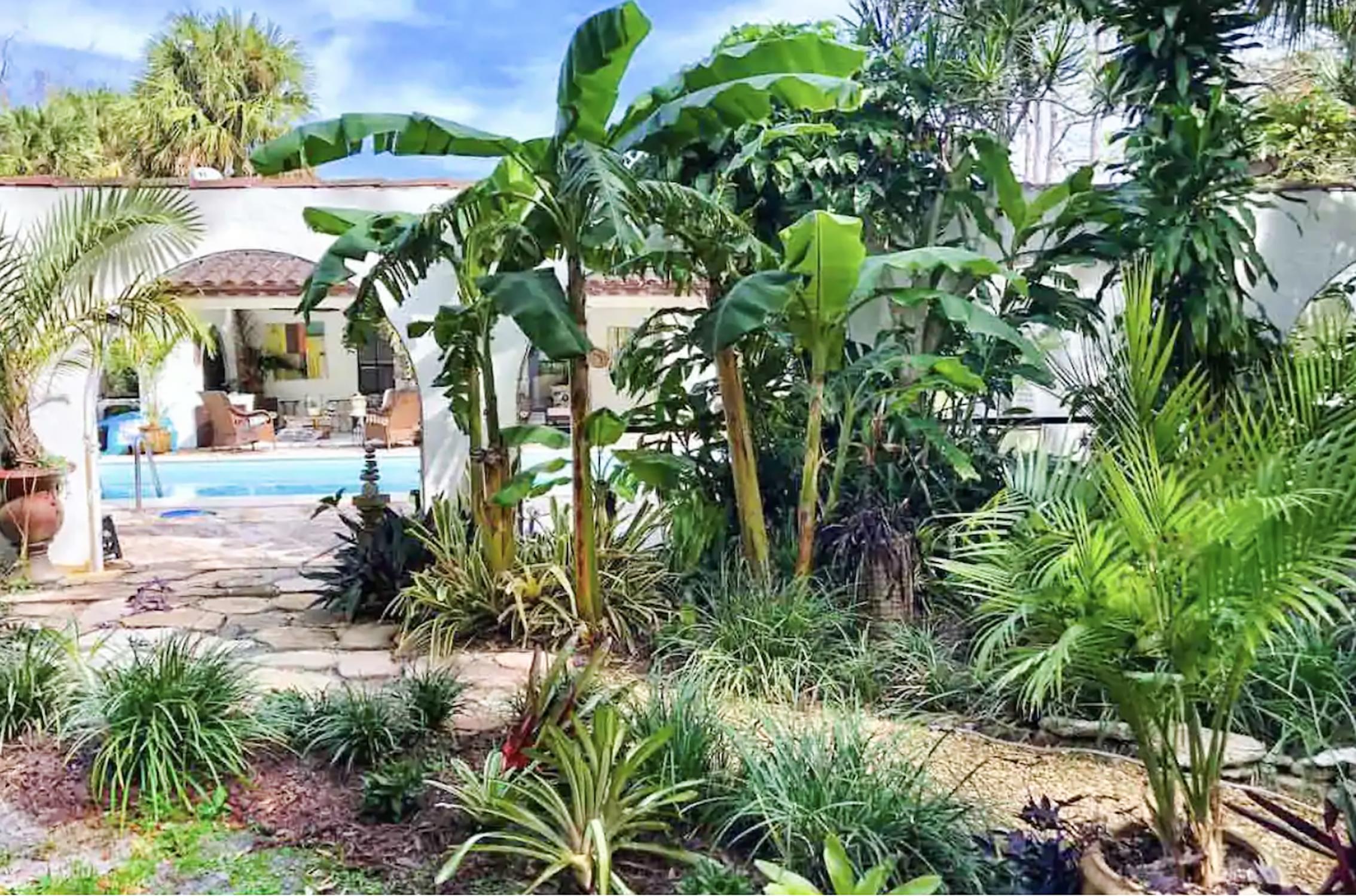 coconut casita pool & property