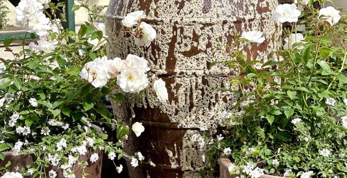 White Gardens, Lauren Liess, Outfit of the Week