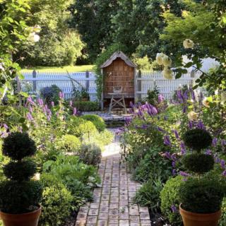 jenny rose innes garden
