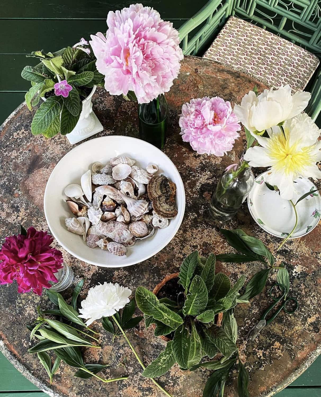 instagrammer maura endres still life