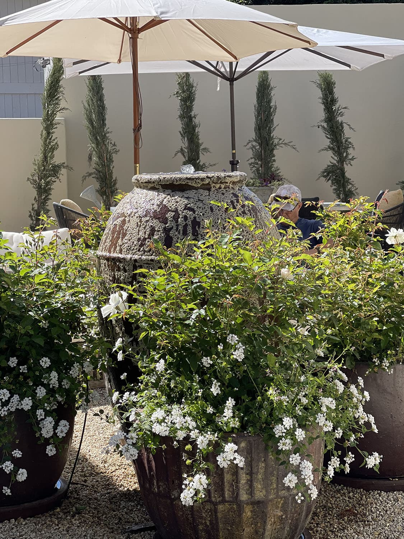 cindy hattersley's fountain backyard
