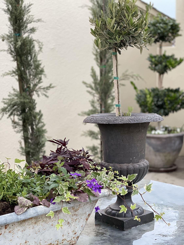 outdoor tablescape closeup