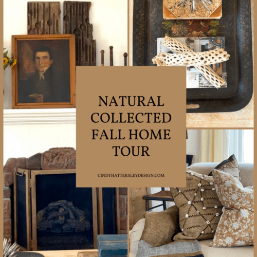 NATURAL COLLECTED FALL HOME TOUR