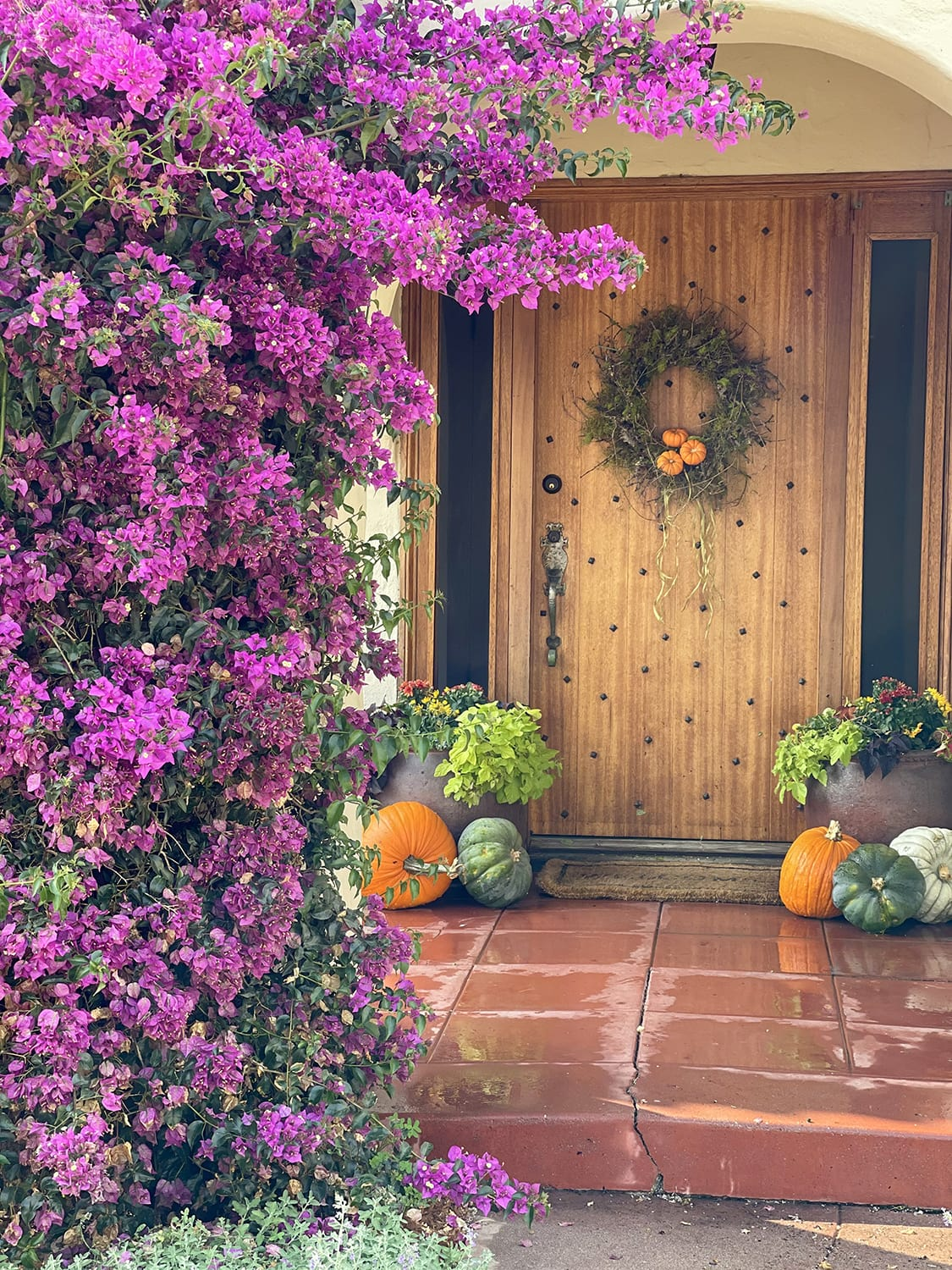 Cindy Hattersley's Porch with bouganvilla