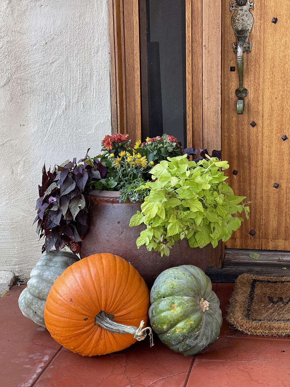 cindy hattersley's porch container & pumpkin vignette